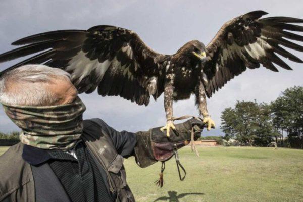 I segreti di Ultimo, carabiniere Apache