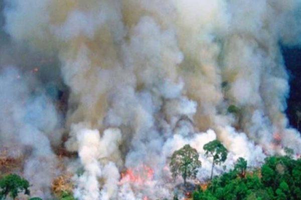 L'Amazzonia brucia: Bolsonaro dà la colpa alle Ong, ma è lui la più grave minaccia per il Pianeta