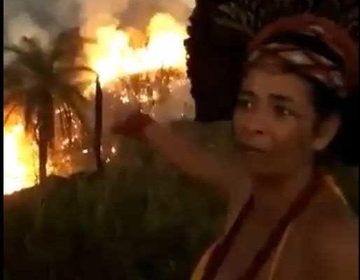 L'Amazzonia sta bruciando da tre settimane, perché (non) se ne parla solo adesso?